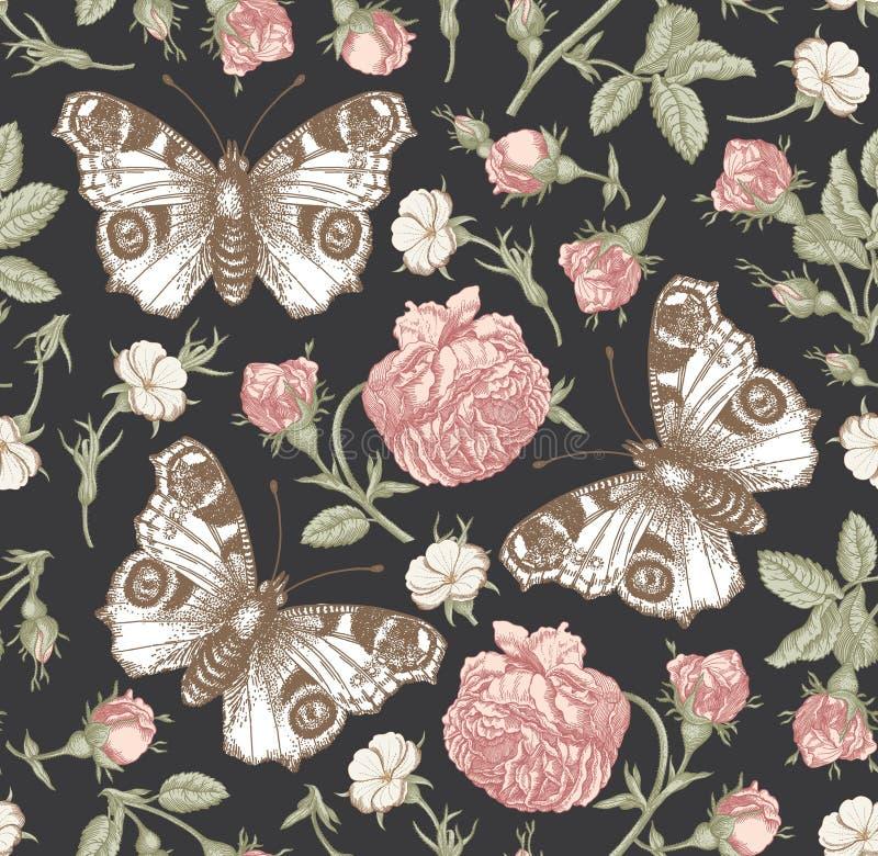 Bezszwowego deseniowego pawiego motyla kwiatów rocznika Realistycznego odosobnionego tła rytownictwa Różany Tapetowy Rysunkowy ag ilustracji