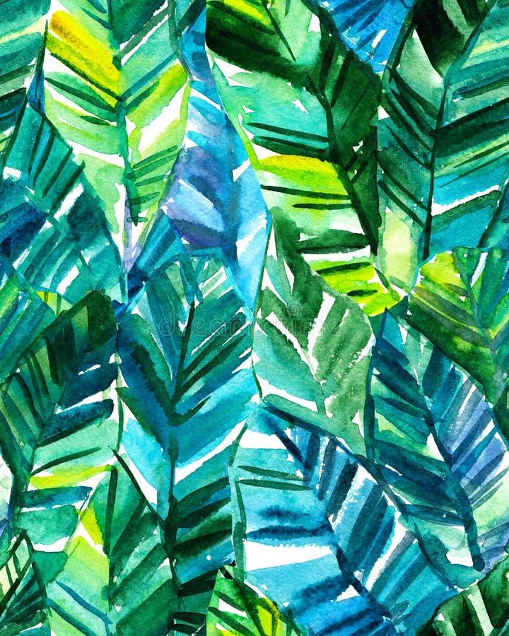 Bezszwowej akwareli palmowego liścia bananowy wzór ilustracja wektor