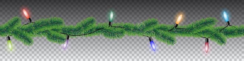 Bezszwowej wektorowej zimy iglaste gałąź z igła liśćmi i kolorowymi bożonarodzeniowymi światłami na przejrzystym tle ilustracji