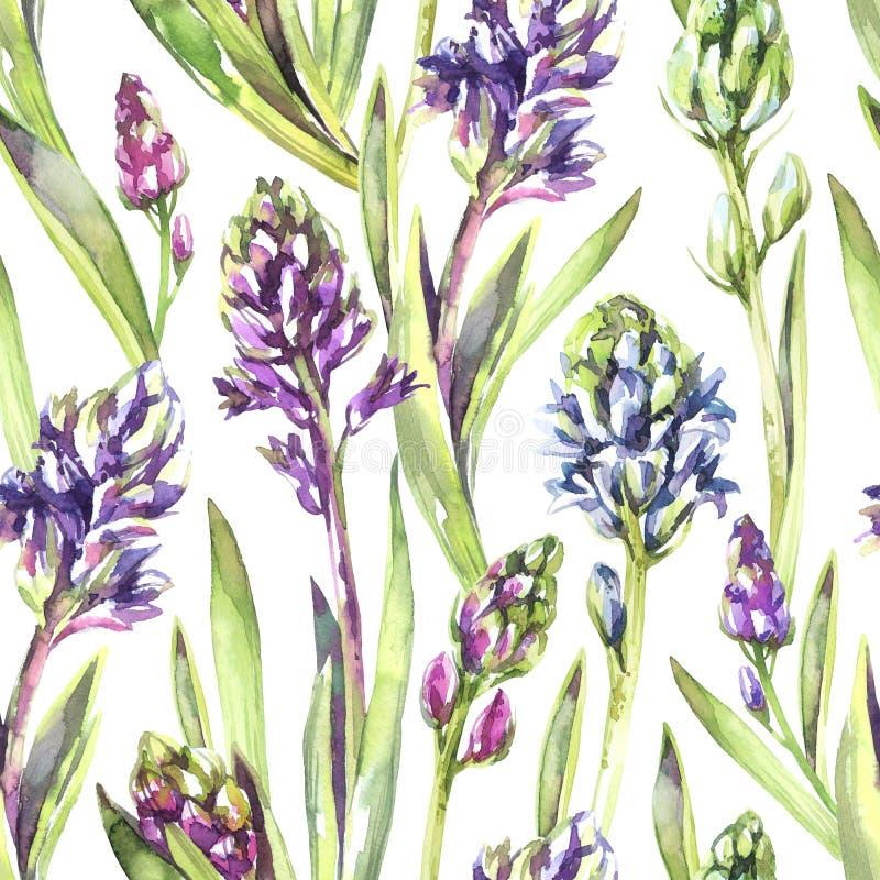 Bezszwowi deseniowi hiacyntów kwiaty, liście i Wiosny akwareli ilustracja w fiołkowych cieniach Botaniczna tekstura świeży ilustracji