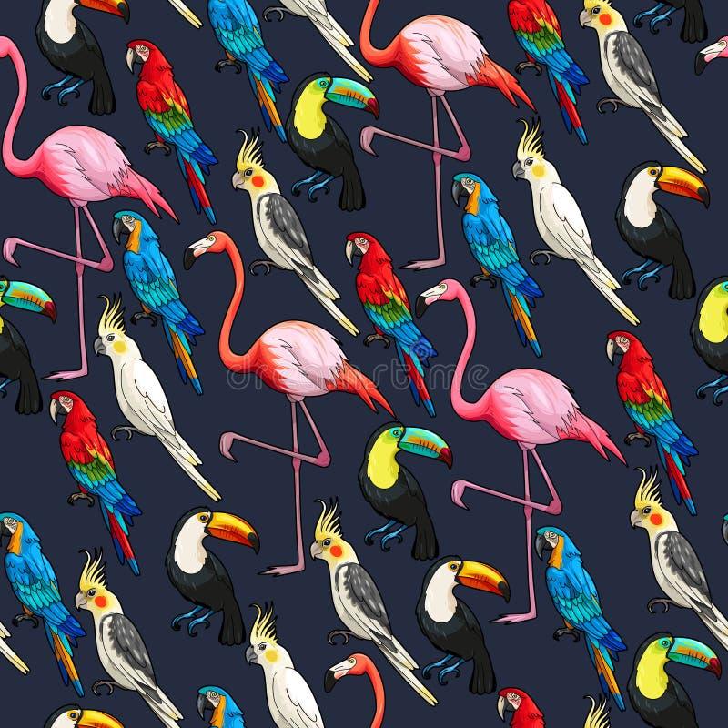Bezszwowi egzotyczni ptaki royalty ilustracja