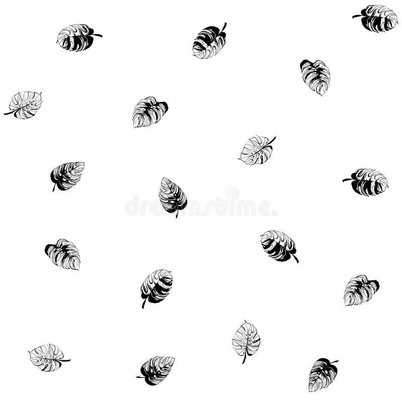 Bezszwowi tropikalni monstera palmy plaży liście deseniują abstrakcjonistycznego tło ilustracji