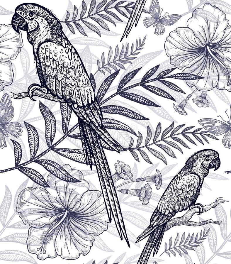 Bezszwowi wzorów kwiaty, ptaki i ilustracji