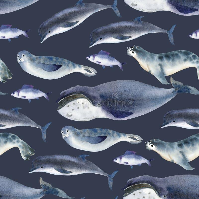 Bezszwowy akwarela wzór o dennych faunach Morski zwierzę Delfin, wieloryb, ryba i foka na ciemnym tle, ilustracji