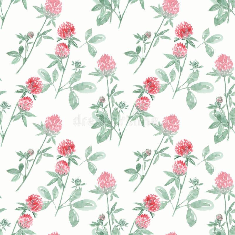 Bezszwowy akwarela wzór z gałąź i kwiatami koniczyna na białym tle ilustracji
