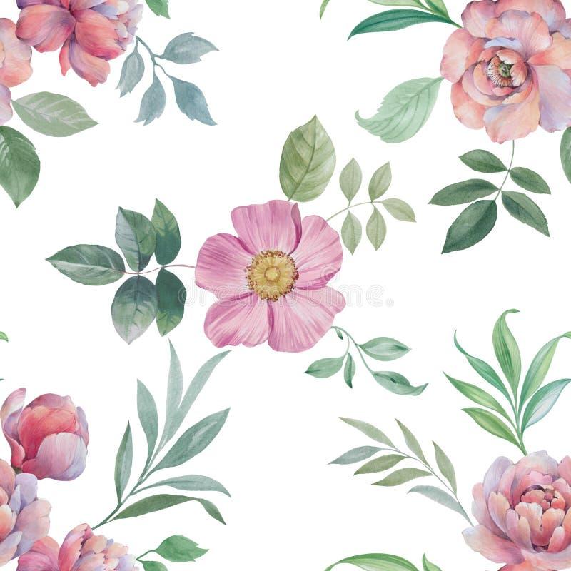 Bezszwowy akwarela wz?r Ilustracja kwiaty i li?cie ilustracji