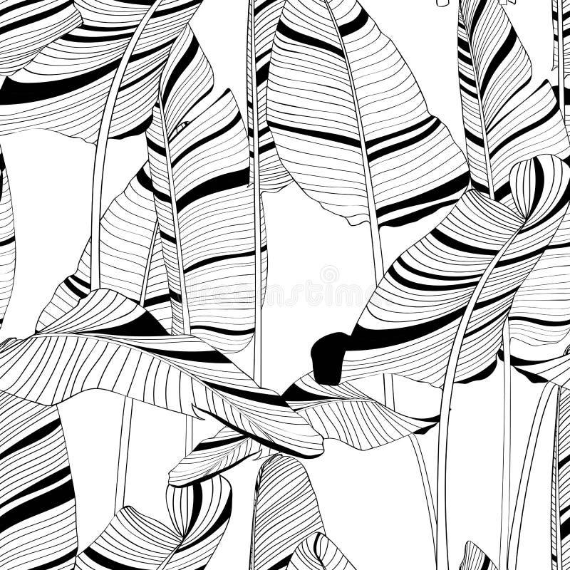 Bezszwowy bananowy liścia wzoru tło Czarny i biały z rysować kreskowej sztuki ilustrację royalty ilustracja