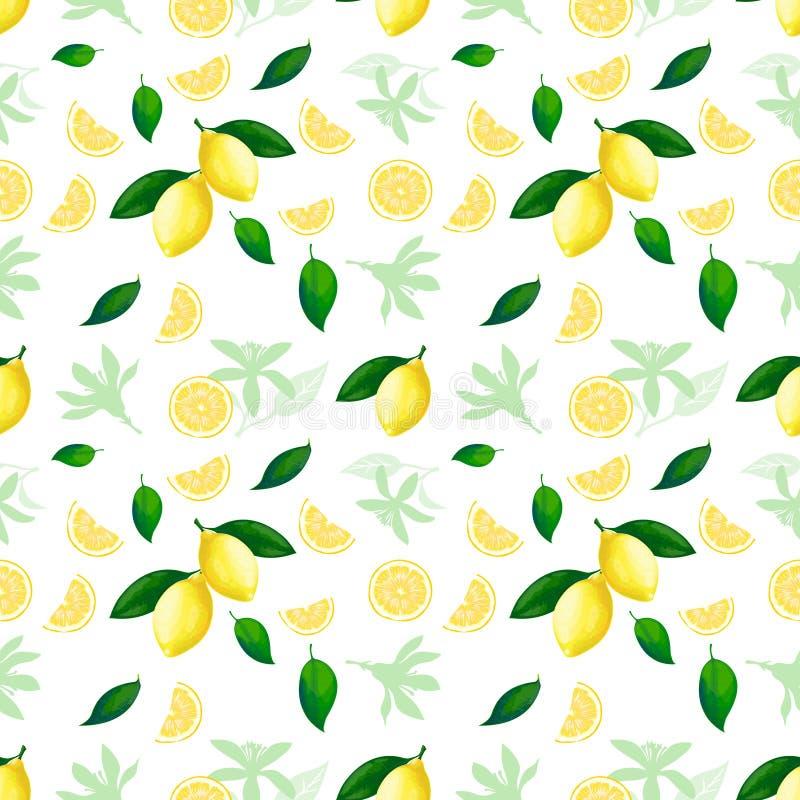 bezszwowy cytryny wzoru Cytryna koktajlu cytrusa owoc tekstury lata żółty świeży wielostrzałowy wektorowy tło royalty ilustracja