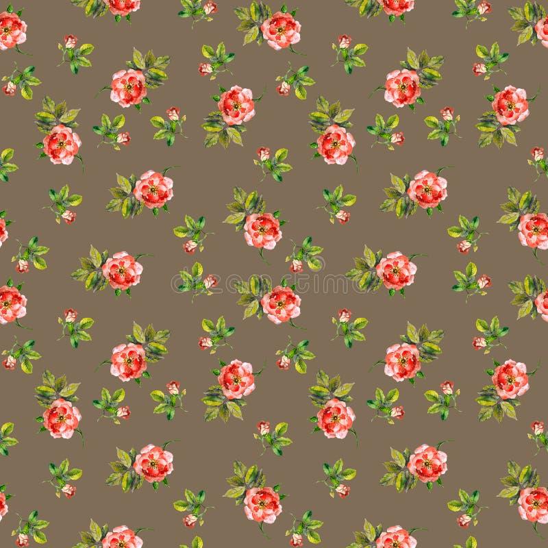 Bezszwowy częstotliwy swatch z kwiecistym projektem - malutkie róże akwarela ilustracji