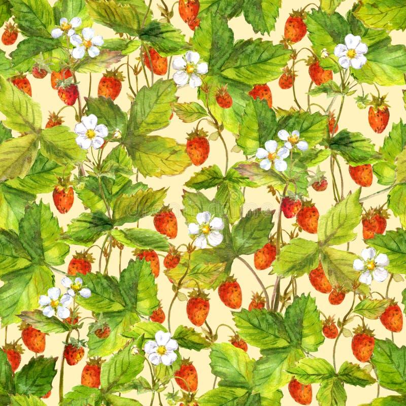 Bezszwowy częstotliwy swatch z wiele dzika lasowa truskawka Watercolour obrazek na żółtym tle ilustracja wektor
