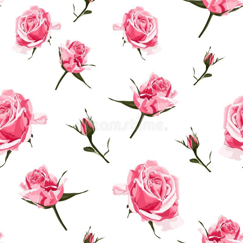 Bezszwowy deseniowy wektorowy kwiecisty akwarela stylu projekt, różowe róże pączkuje Nieociosany romantyczny tło druk royalty ilustracja