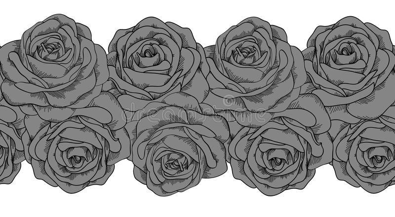 Bezszwowy horyzontalny ramowy element szarzy róż wi ilustracja wektor