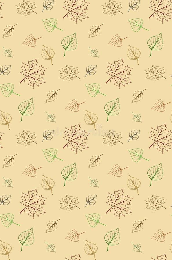 Bezszwowy jesień liści wektoru wzór, tło/ zdjęcia royalty free