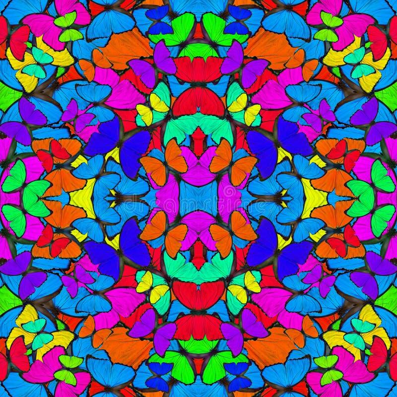 Bezszwowy kolorowy t?o robi? kompilacja B??kitni Morpho motyle z aksamitn? i jaskraw? galanteryjn? tekstur? royalty ilustracja