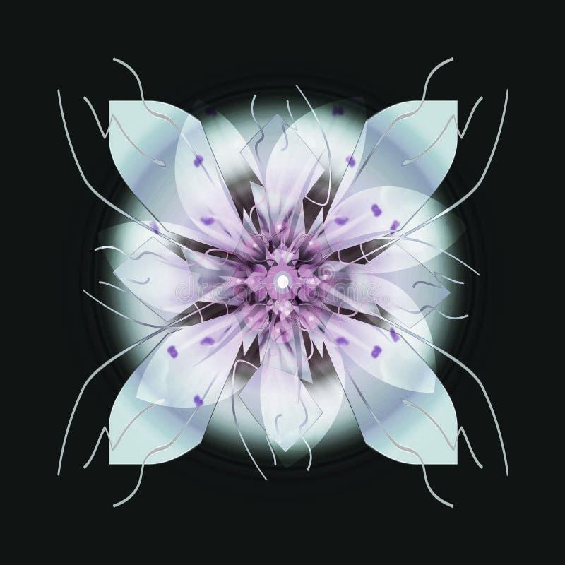 BEZSZWOWY kwiatu mandala W BŁAWYM I PURPUROWYM, Z PŁASKIM tłem W czerni, WYPLATA WYKŁADA WEWNĄTRZ Z, centrali światło W szarość ilustracja wektor