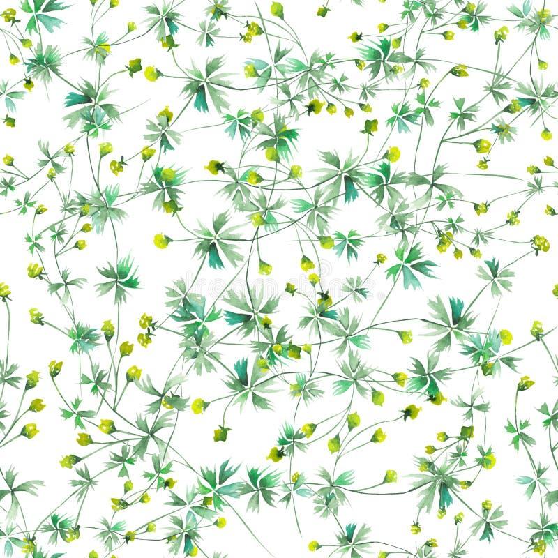 Bezszwowy kwiecisty wzór z żółtymi wildflowers ilustracji