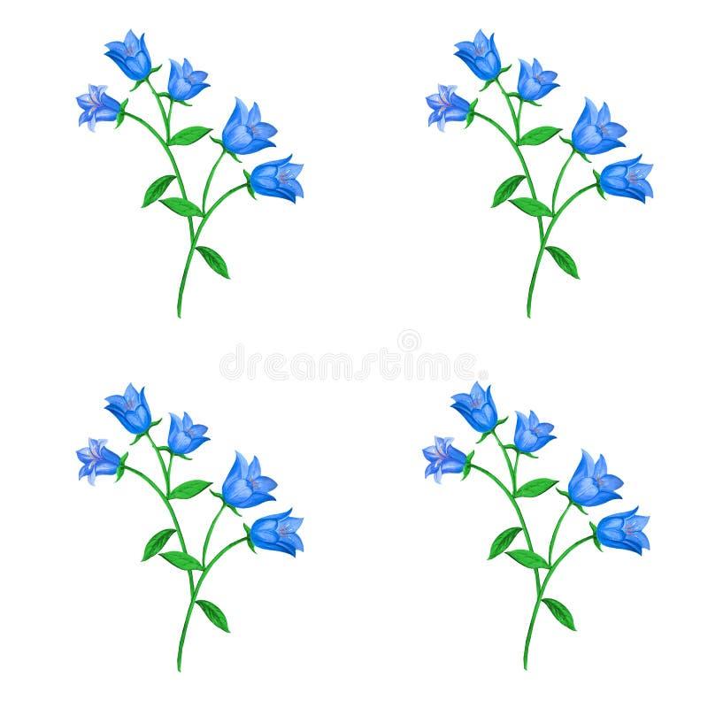 Bezszwowy kwiecisty wzór z błękitnymi dzwonkowymi kwiatami na białym tle royalty ilustracja