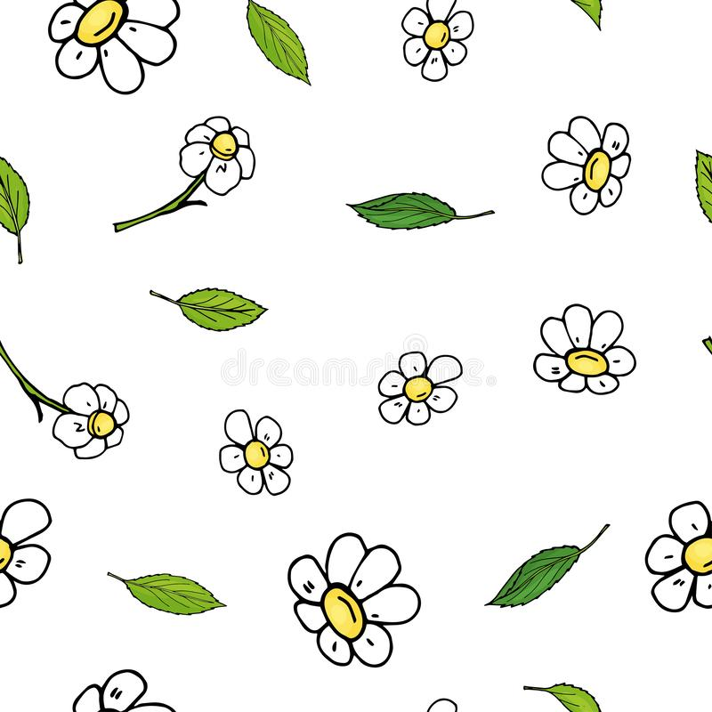 Bezszwowy kwiecisty wzór z chamomile liśćmi i kwiatami Wektorowa ilustracja na białym tle w nakreślenie stylu ilustracji