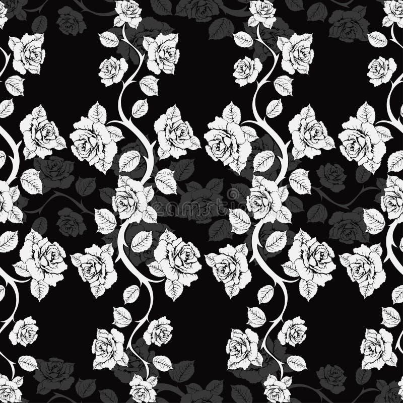 Bezszwowy kwiecisty wzór z róż gałąź Białe róże na czarnym tle ilustracja wektor