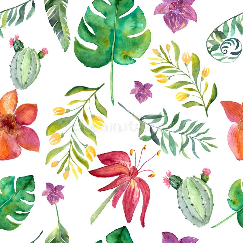 Bezszwowy kwiecisty wzór z tropikalnymi kwiatami, akwarela royalty ilustracja