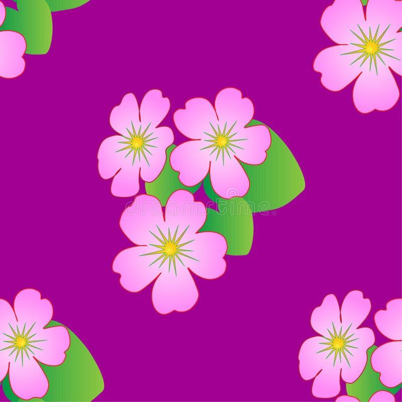 Bezszwowy kwiecisty wzór z tropikalnymi kwiatami, wektor ilustracji