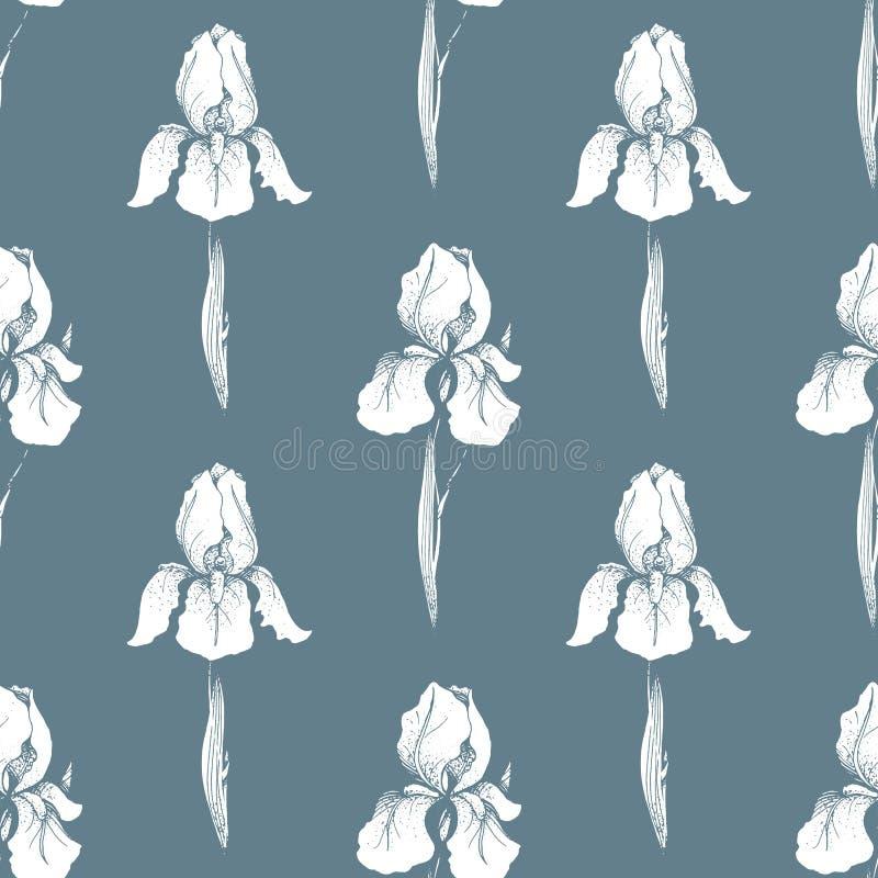 bezszwowy kwiecisty wzoru kwiat światła playnig tło Grawerujący bezszwową teksturę z kwiatami irysowymi Zawijas kafelkowa tapeta royalty ilustracja