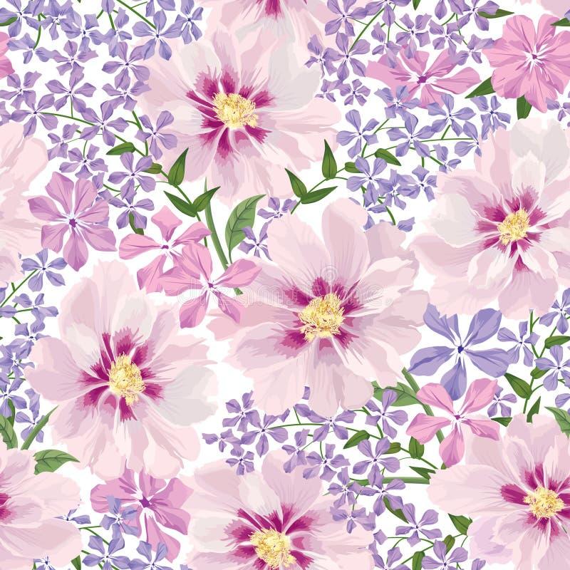 bezszwowy kwiecisty wzoru kwiat światła playnig tło Kwiecisty bezszwowy tekst ilustracji