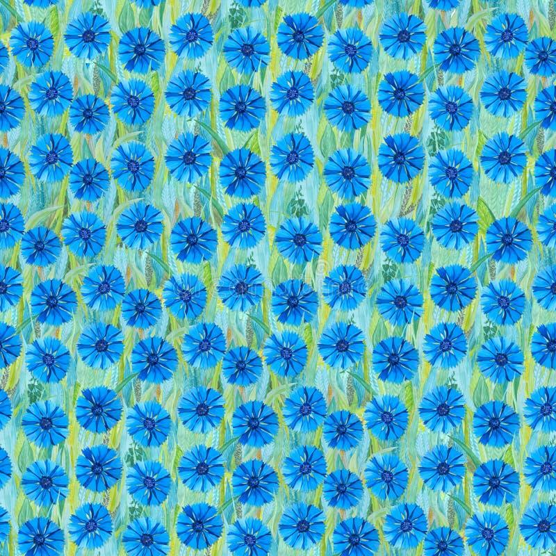 Bezszwowy lato wzór biali cornflowers na trawie Błękitny tło w postaci kwiat halizny royalty ilustracja