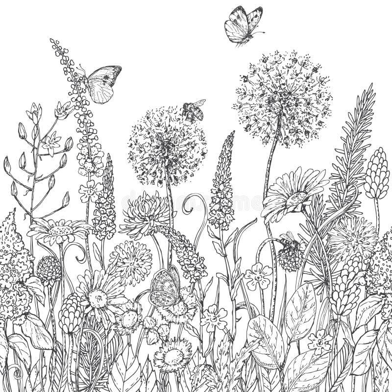 Bezszwowy linia wzór z wildflowers i insektami ilustracja wektor