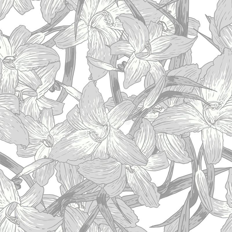 Bezszwowy monochromatyczny kwiecisty tło z lelujami ilustracja wektor