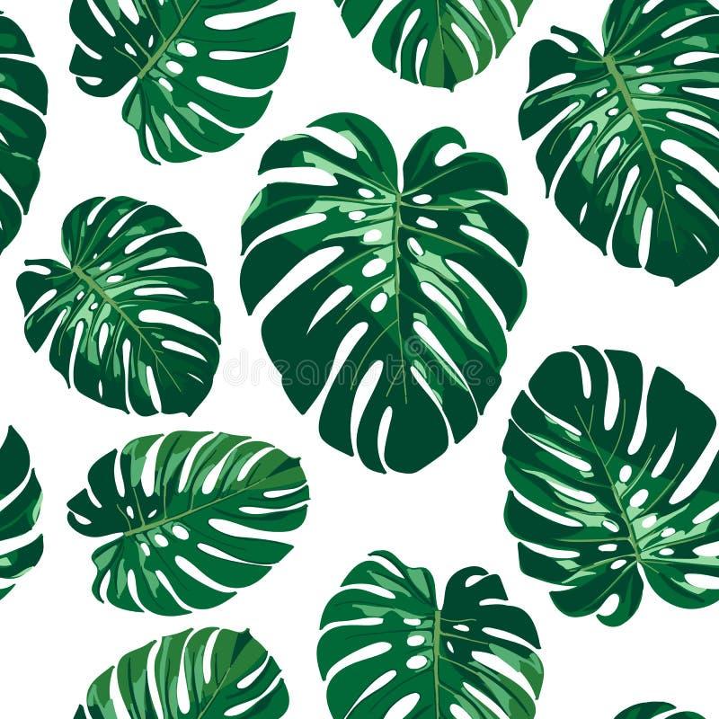 Bezszwowy monstera palmy liści wzór ilustracji