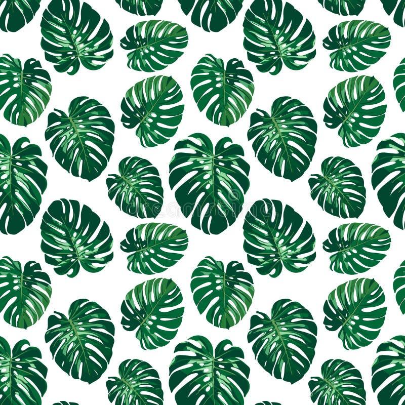 Bezszwowy monstera palmy liści wzór royalty ilustracja