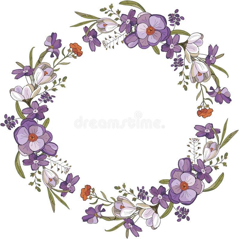 Bezszwowy muśnięcie i wianek krokusów kwiaty royalty ilustracja