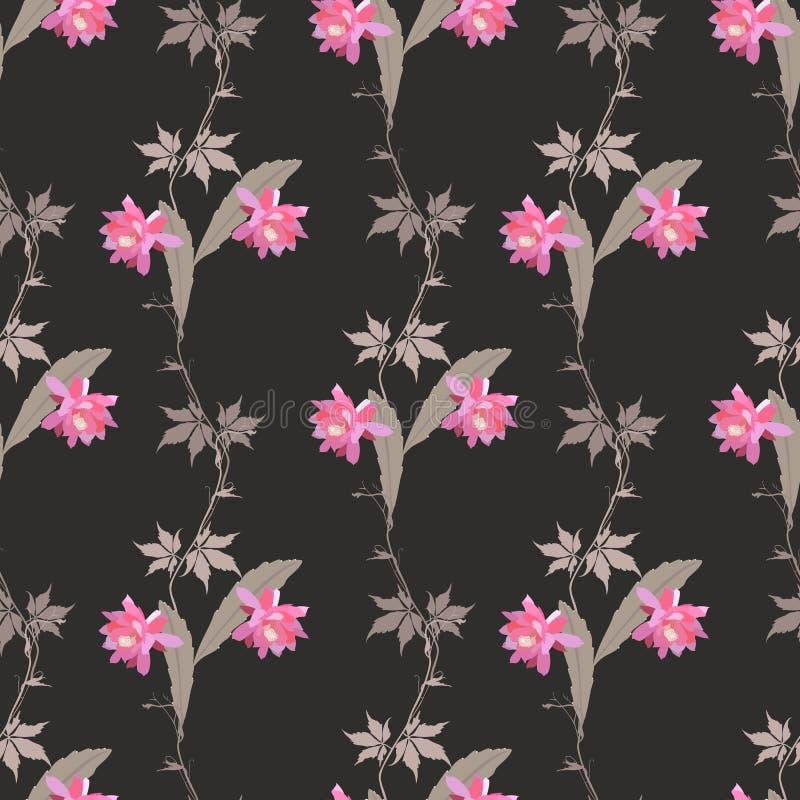 Bezszwowy naturalny wzór z gałąź dziewiczy winogrona, kwiaty i liście phyllocactus odizolowywający na czarnym tle w wektorze, ilustracji