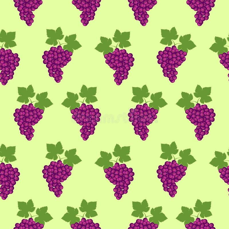 Bezszwowy owoc wektoru wzór, jaskrawy koloru tło z winogronami i liście, nad jasnozielonym tłem ilustracji