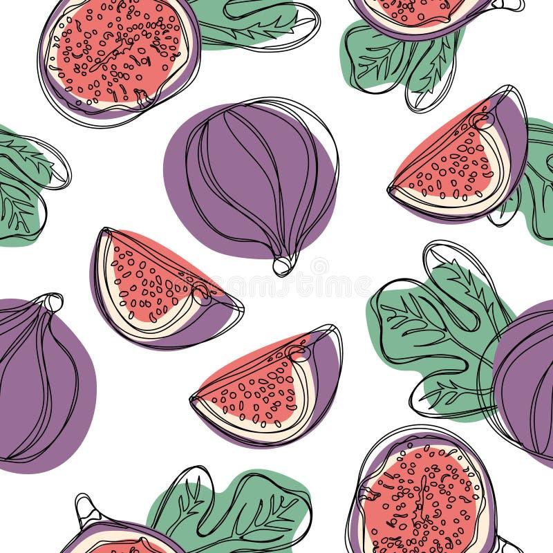 Bezszwowy ręka remisu wzór z świeżą figi owoc Wektorowa ilustracja na białym odosobnionym tle ilustracja wektor