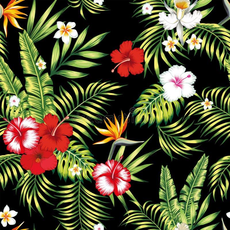 Bezszwowy realistyczny wektorowy botaniczny deseniowy czarny tło ilustracja wektor
