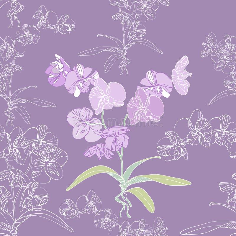 bezszwowy storczykowy tła phalaenopsis royalty ilustracja