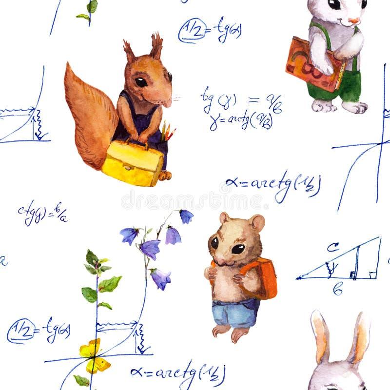 Bezszwowy szkoła wzór z zwierzętami, matematyki formuła, kwitnie akwarela ilustracji