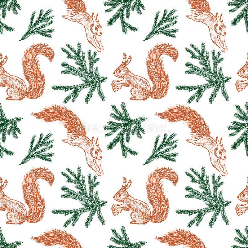 Bezszwowy tło lasowe wiewiórki sosnowe gałąź i ilustracja wektor