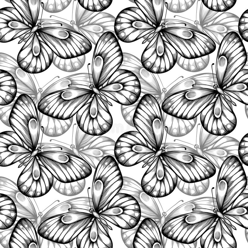 Bezszwowy tło motyle czarny i biały ilustracja wektor