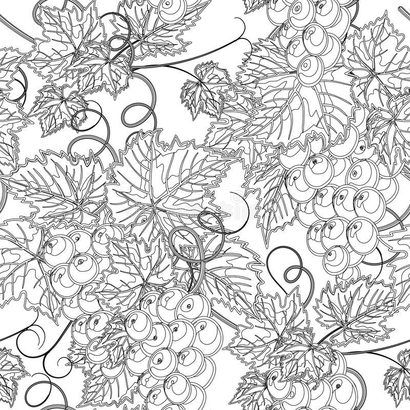 bezszwowy tło winograd również zwrócić corel ilustracji wektora ilustracja wektor