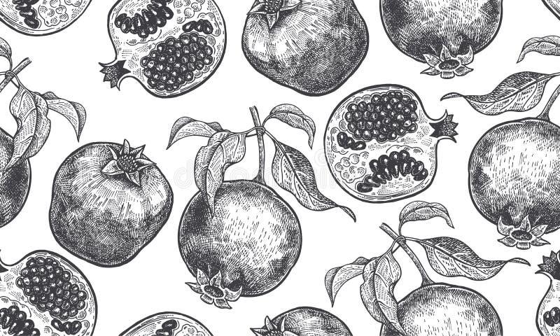 Bezszwowy tło z granatowiec owoc royalty ilustracja