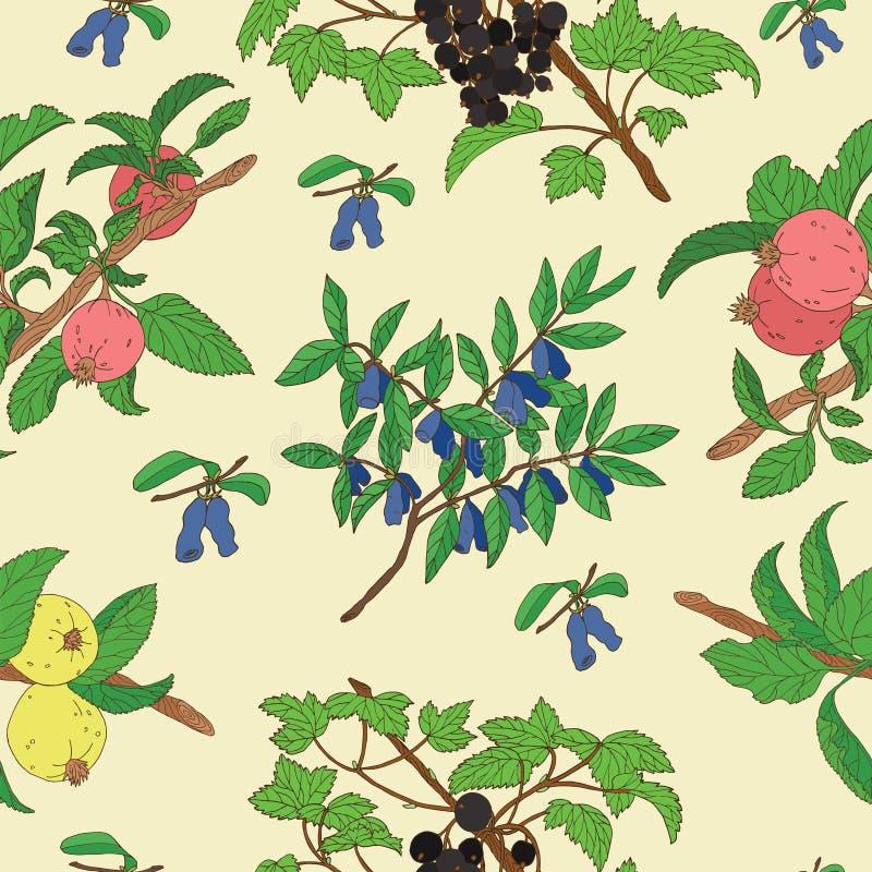 Bezszwowy tło z jagodami i jabłkami ilustracji