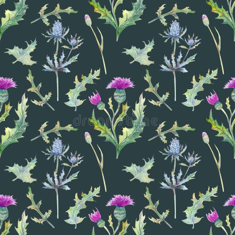 Bezszwowy tło z wiosna liśćmi i kwiatami Wildflowers na zielonym tle kwiecisty wzór dla tapety lub tkaniny zdjęcia stock