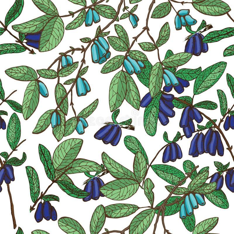 Bezszwowy tło z zielonymi gałąź banksja z świeżymi dojrzałymi jagodami na bielu ilustracji