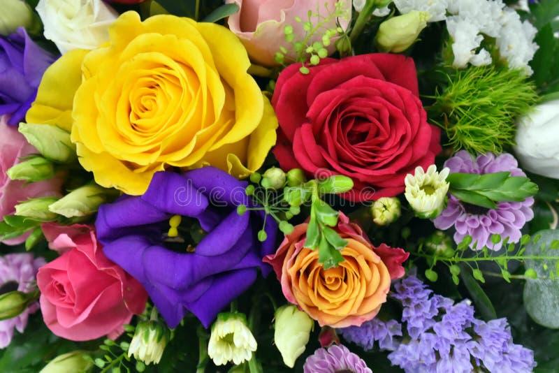 Bezszwowy t?o kolorowi kwiaty zdjęcia royalty free