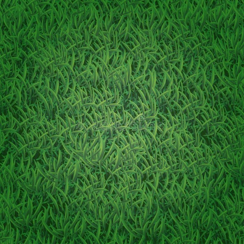 bezszwowy trawy wzoru royalty ilustracja