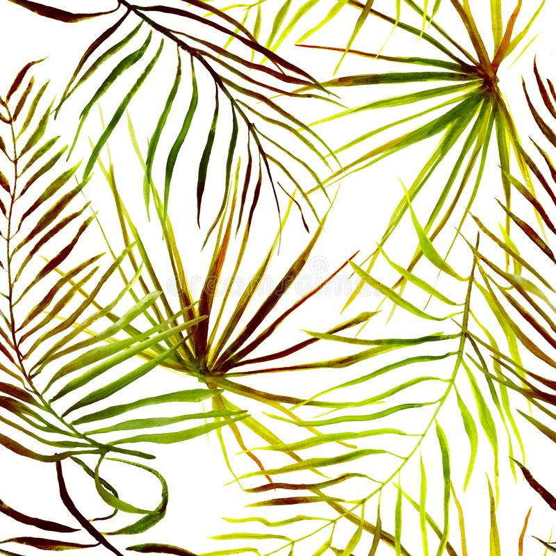 Bezszwowy tropikalny liścia wzór royalty ilustracja