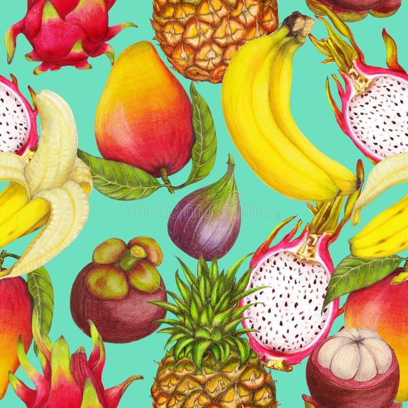 Bezszwowy tropikalny wzór ręki rysować świeże soczyste owoc zdjęcia royalty free
